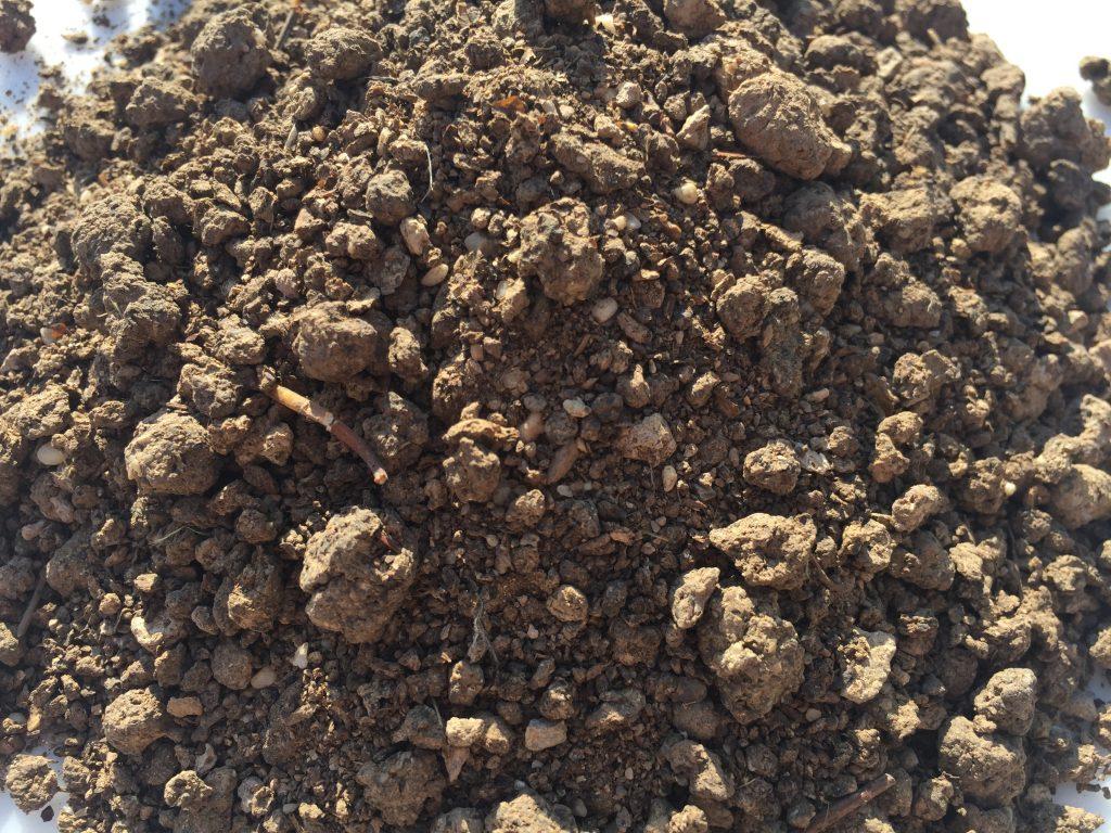 Organic Heat Dried Chicken Manure