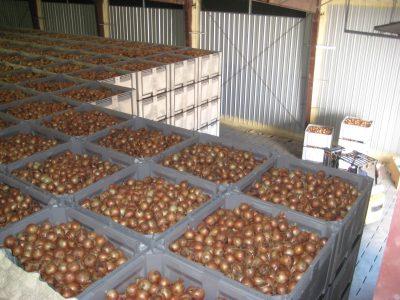 OMRI Organic Fertilizer